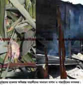 13 houses, shops torched: teak, pineapple plantation ravaged: Tribal and Bengali confront at Rangamati