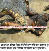 4 were killed at brush fire when JSS-UPDF engaged gun-battle at Rangamati